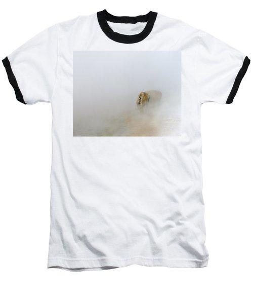 Yellowstone Bison Baseball T-Shirt