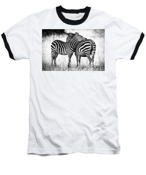 Zebra Love Baseball T-Shirt by Adam Romanowicz