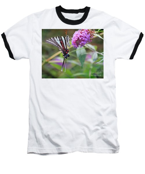 Zebra Swallowtail Butterfly On Butterfly Bush  Baseball T-Shirt