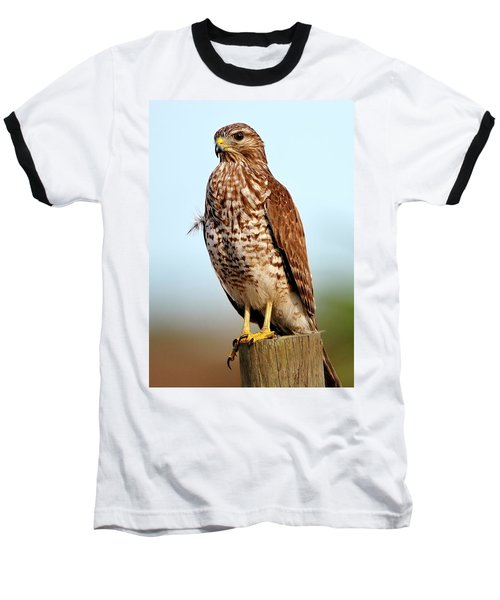 Portrait Of A Red Shouldered Hawk Baseball T-Shirt