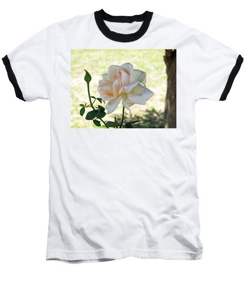 Baseball T-Shirt featuring the photograph A Beautiful White And Light Pink Rose Along With A Bud by Ashish Agarwal