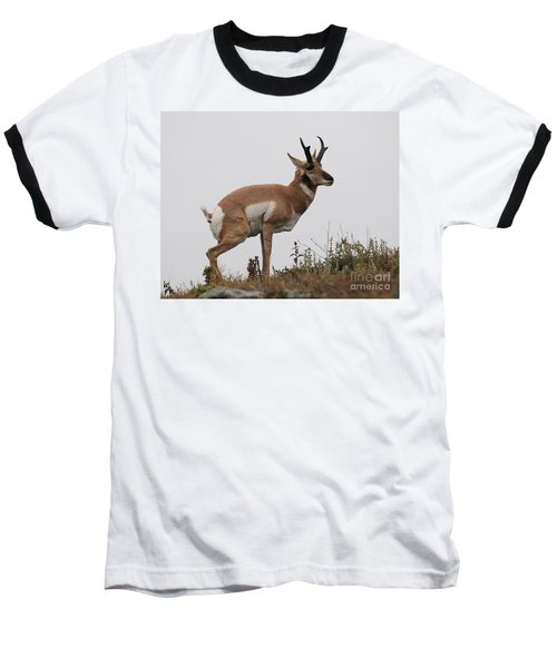 Baseball T-Shirt featuring the photograph Antelope Critiques Photography by Art Whitton