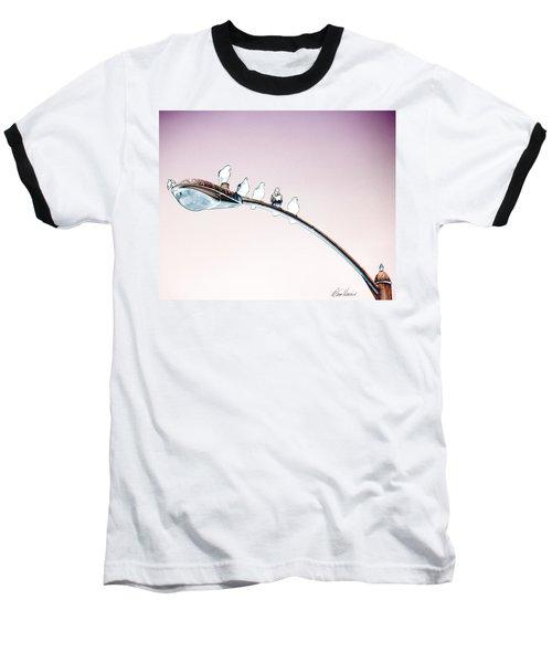 Birds On A Streetlight Baseball T-Shirt