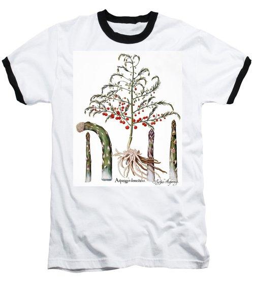 Botany: Asparagus, 1613 Baseball T-Shirt by Granger
