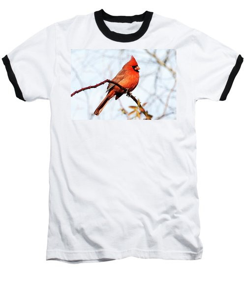 Cardinal 1 Baseball T-Shirt by Joe Faherty