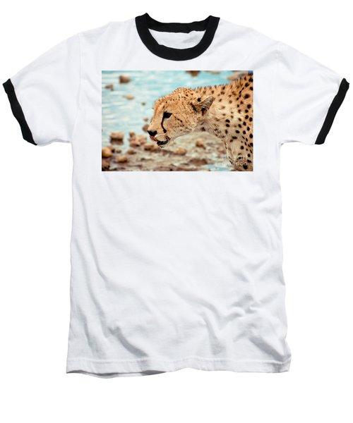 Cheetah Headshot Baseball T-Shirt by Darcy Michaelchuk