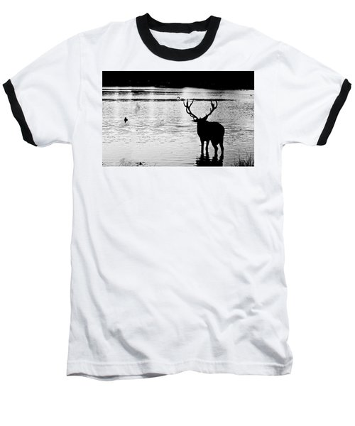 Baseball T-Shirt featuring the photograph Cooling Off Deer by Maj Seda