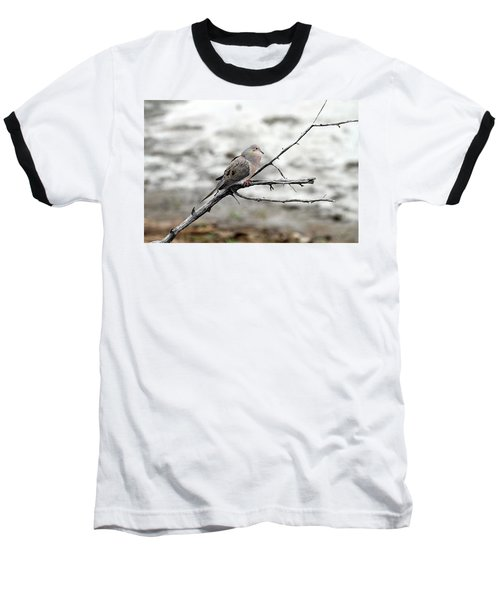 Baseball T-Shirt featuring the photograph Good Morning Dove by Elizabeth Winter