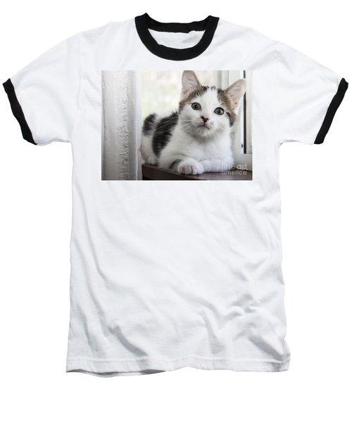 Kitten In The Window Baseball T-Shirt