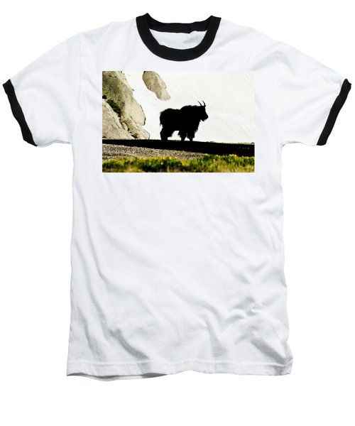 Nature's Silhouette Baseball T-Shirt by Colleen Coccia