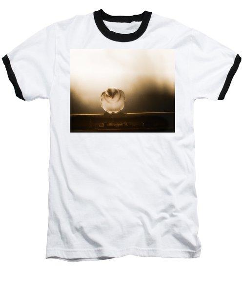 On Winters Edge Baseball T-Shirt
