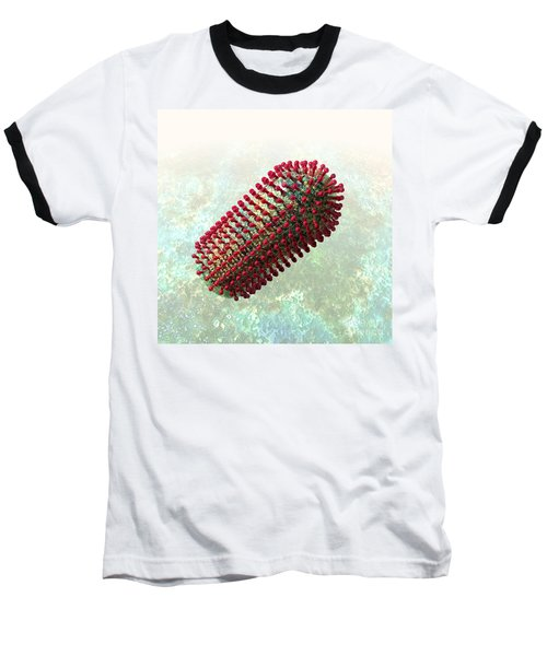 Rabies Virus 2 Baseball T-Shirt by Russell Kightley