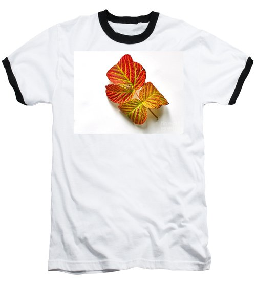 Raspberry Leaves In Autumn Baseball T-Shirt by Sean Griffin