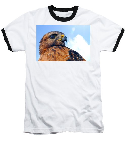 Baseball T-Shirt featuring the photograph Red Shouldered Hawk Portrait by Dan Friend