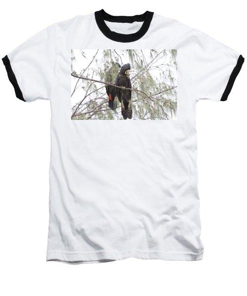 Red Tailed Black Cockatoos Baseball T-Shirt by Douglas Barnard