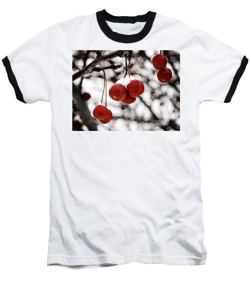 Red Winter Berries Baseball T-Shirt
