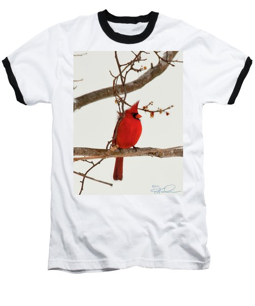 Righteous Cardinal Baseball T-Shirt