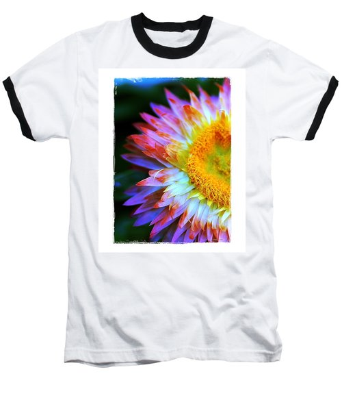 Baseball T-Shirt featuring the photograph Strawflower by Judi Bagwell
