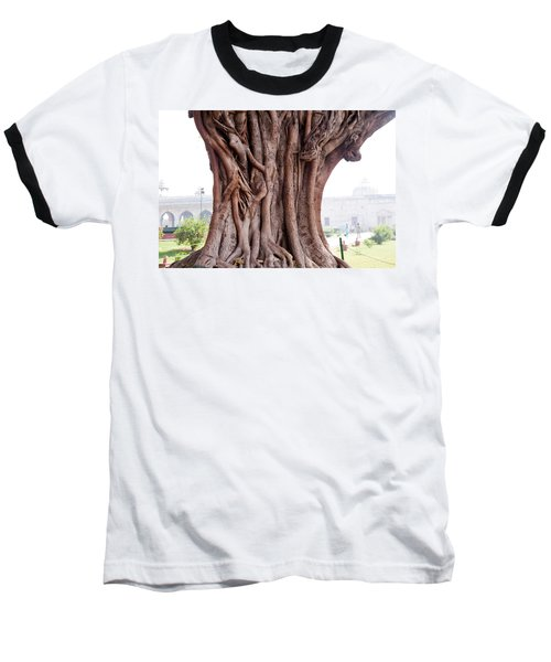 The Twisted And Gnarled Stump And Stem Of A Large Tree Inside The Qutub Minar Compound Baseball T-Shirt by Ashish Agarwal