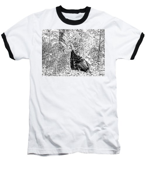 Wild Turkey In Black And White Baseball T-Shirt by Maciek Froncisz