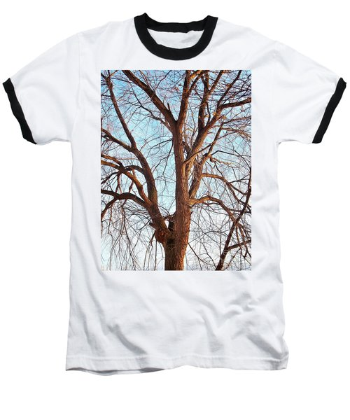 Baseball T-Shirt featuring the photograph Winter Light by Chalet Roome-Rigdon