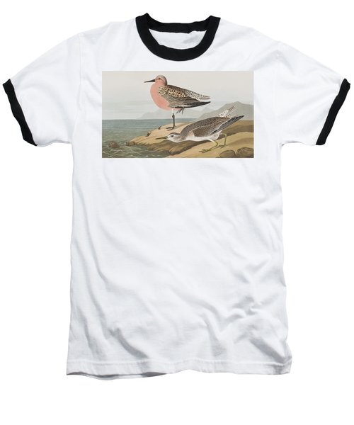 Red-breasted Sandpiper  Baseball T-Shirt