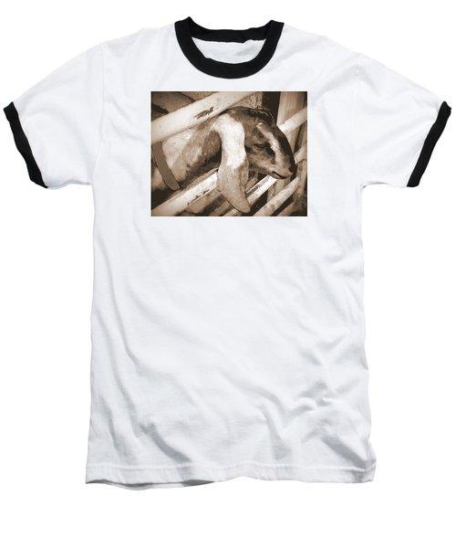 A Friend Baseball T-Shirt by Jodie Marie Anne Richardson Traugott          aka jm-ART