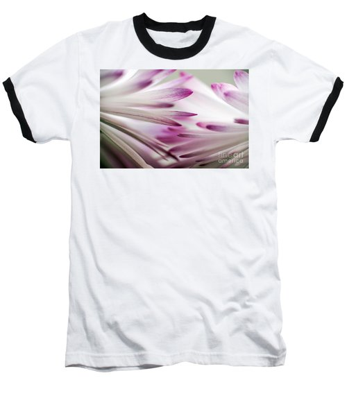 Beautiful Colorful Image About Daisy Flower Baseball T-Shirt by Odon Czintos