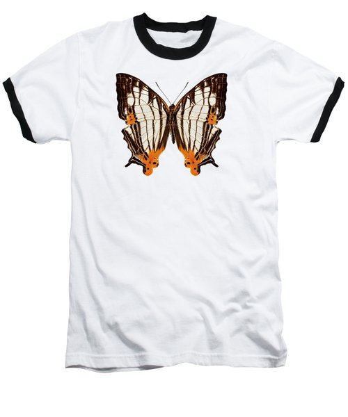 Butterfly Species Cyrestis Lutea Martini Baseball T-Shirt
