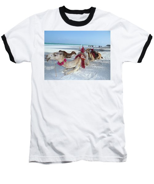Camel On Beach Kenya Wedding4 Baseball T-Shirt