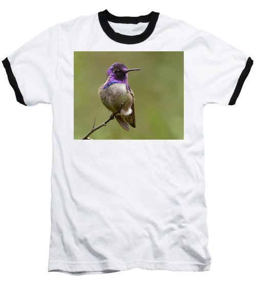 Baseball T-Shirt featuring the photograph Costa's Hummingbird, Solano County California by Doug Herr