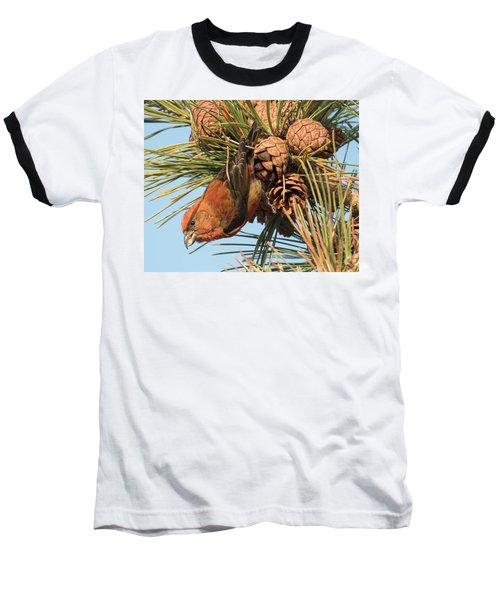 Crossbill Baseball T-Shirt