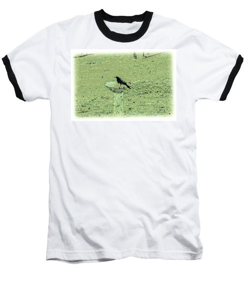 Crow And Bath Baseball T-Shirt