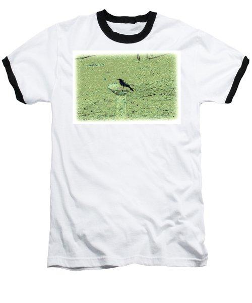 Crow And Bath Baseball T-Shirt