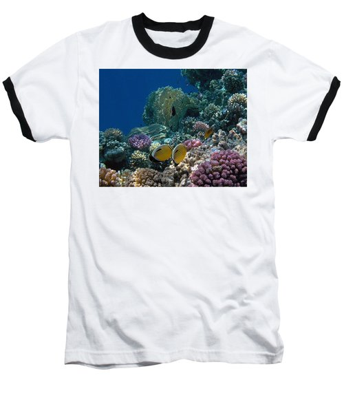 Exquisite Butterflyfish In The Red Sea Baseball T-Shirt