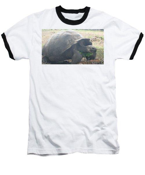Giant Baseball T-Shirt by Will Burlingham