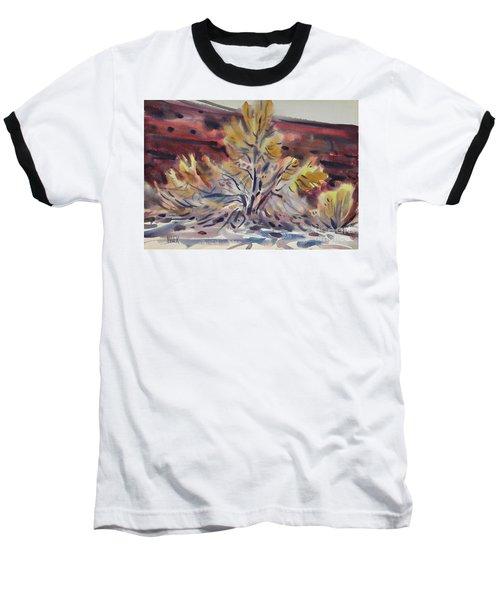 Ironwood Baseball T-Shirt by Donald Maier