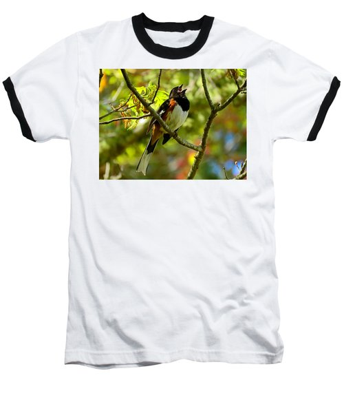 Towhee In Song Baseball T-Shirt