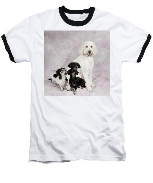 Fur Friends Baseball T-Shirt by Erika Weber