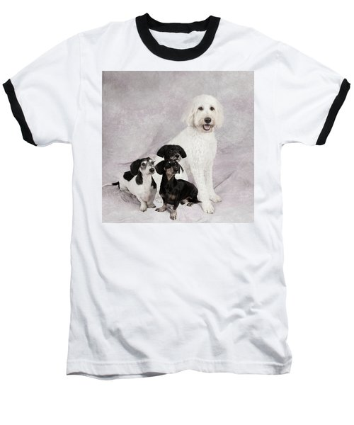 Fur Friends Baseball T-Shirt