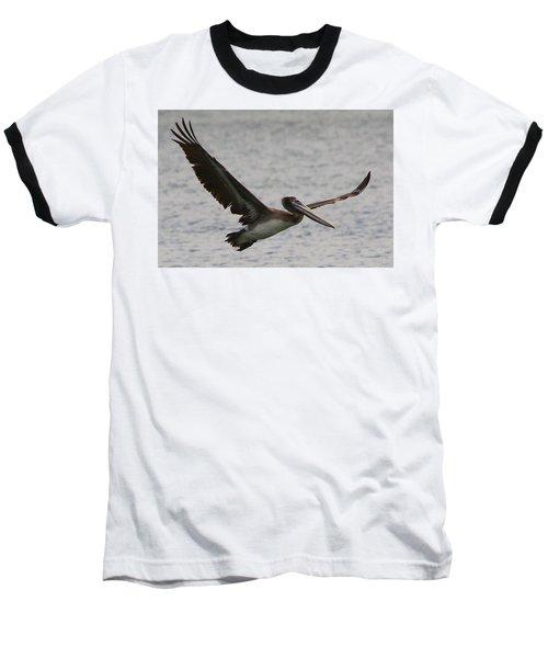 Pelican In Flight Baseball T-Shirt by Laurel Talabere