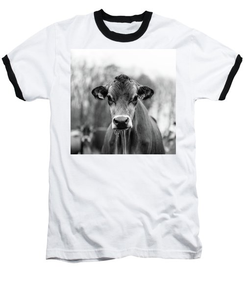Portrait Of A Dairy Cow In The Rain Stowe Vermont Baseball T-Shirt