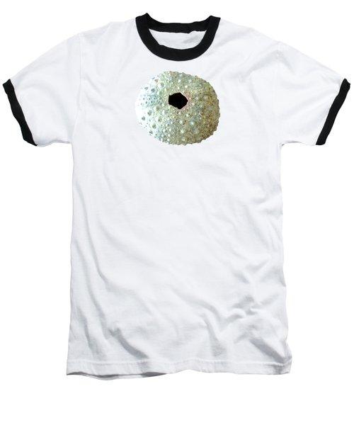 Sea Urchin Baseball T-Shirt by Anastasiya Malakhova