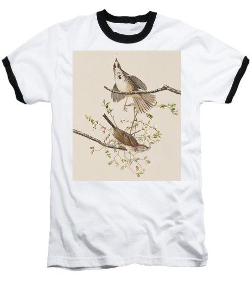 Song Sparrow Baseball T-Shirt by John James Audubon