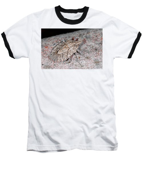 Baseball T-Shirt featuring the photograph Stink Bug by Breck Bartholomew