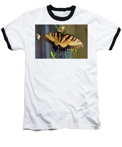 Tiger Swallowtail Baseball T-Shirt