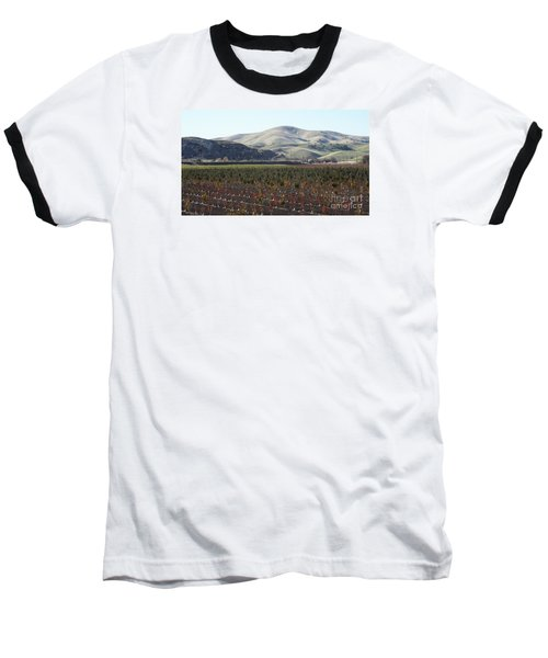 Vineyard Baseball T-Shirt