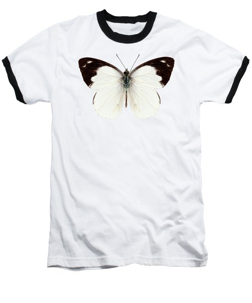 White Butterfly Species Apias Indra Indra Baseball T-Shirt