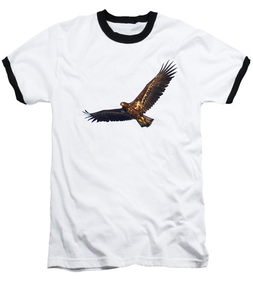Whitetailed Eagle Transparent Baseball T-Shirt