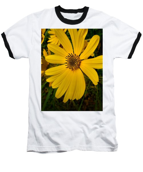 Wild Yellow Baseball T-Shirt